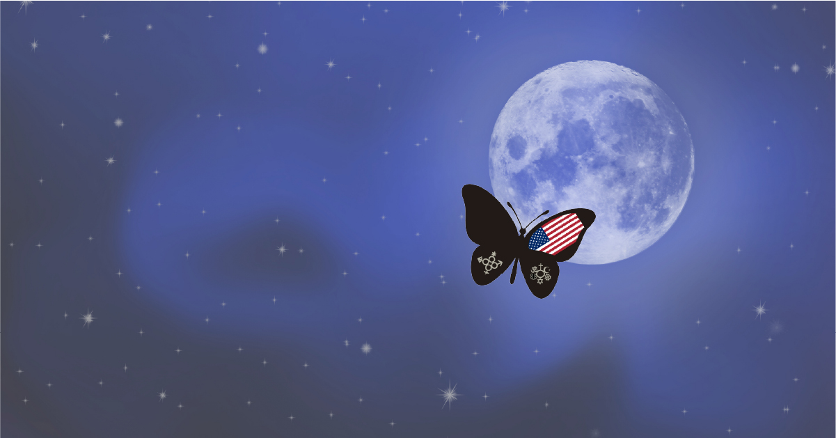 Butterfly Against Moon