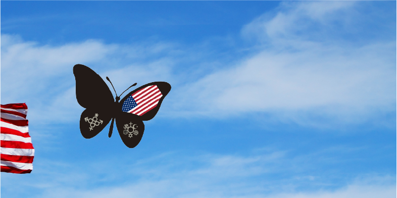 American Flag and Butterfly