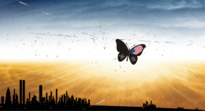 American Butterfly over City