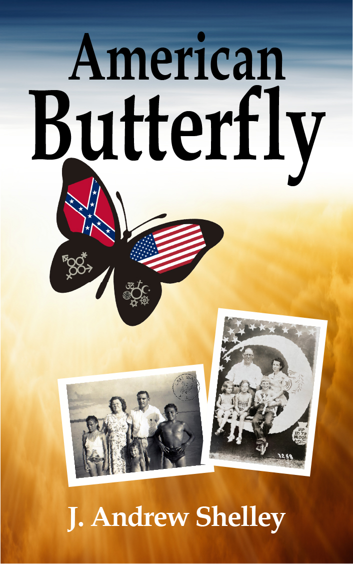 American Butterfly Book Cover